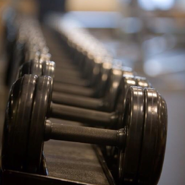 Dumbbells on Rack